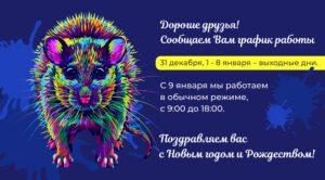 мышь_31 декабря